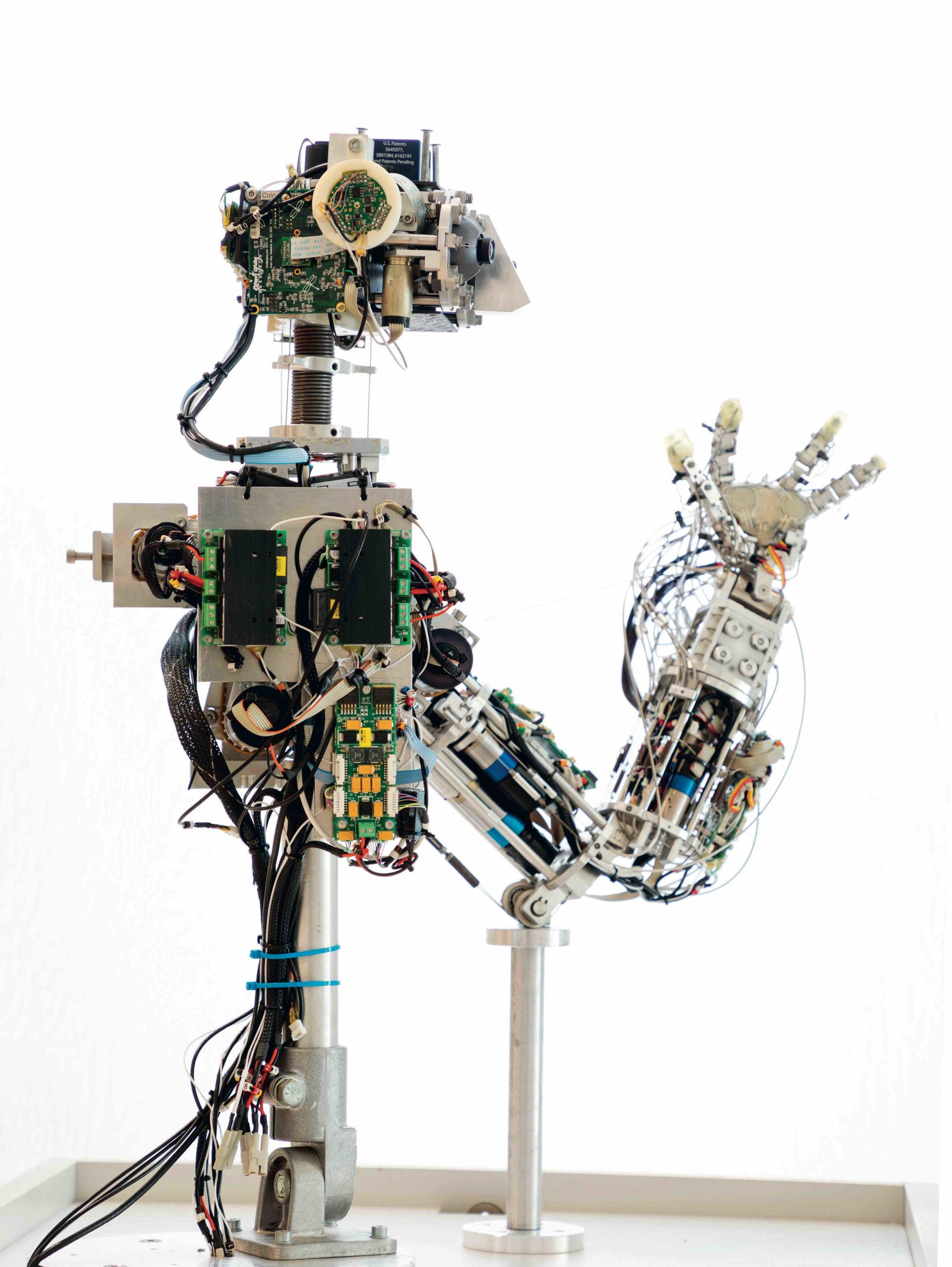 mostra Robot